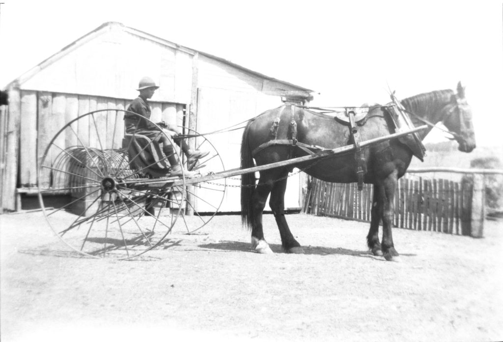 Boy with horse and cart possibly Illford